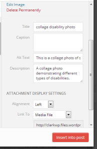 This is a picture of the WP edit a photo menu and where to add the alternate text for a photo