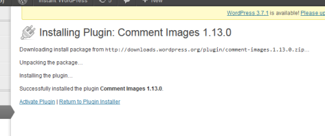 This page shows when the plugin is installing.