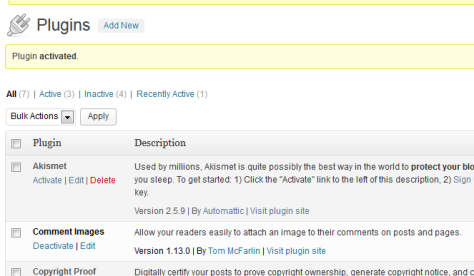 This is the page telling you that the plugin is activated.