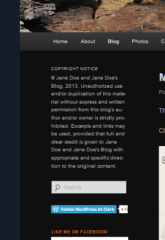 Example of Text Widget displaying copyright notice in sidebar on Theme.