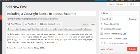 Example of a copyright notice in a WordPress post.
