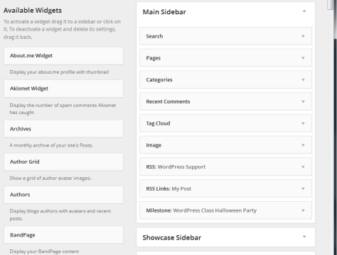 Expanded Widget Menu in the WordPress backend.