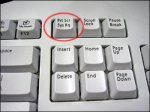 This is an image of the Windows print screen button.