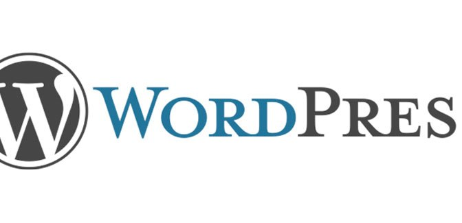 Have You Ever Read the WordPress.com Terms of Service?