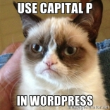 The Cat Said To Use Capital P In WordPress.