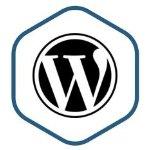 Bitnami Logo for WP instance.