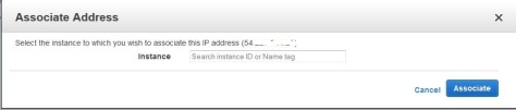 Associate IP with instance