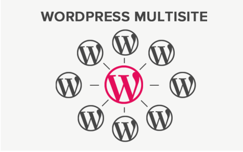 A photo on WordPress MultiSite.