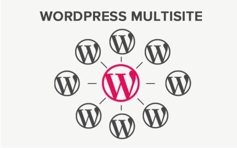 A photo on WordPress MultiSite.
