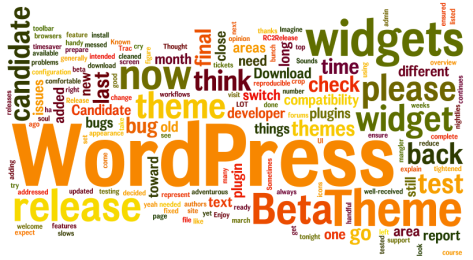 WordPress Wordle by Lorelle VanFossen.