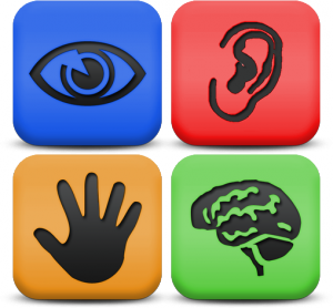 Accessibility image showing a ear, eye, hand, and brain.