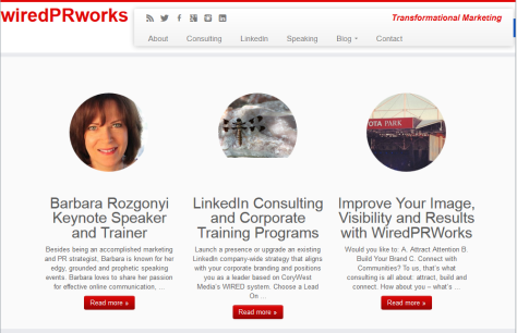 Barbara Rozgonyi, wiredPRworks - WordPress site - screenshot.
