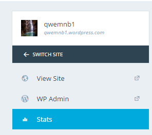 Switch Site Picture on WordPress Account