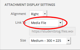 A screenshot of the attachment details link to selection when adding new documents to WordPress using the media uploader.