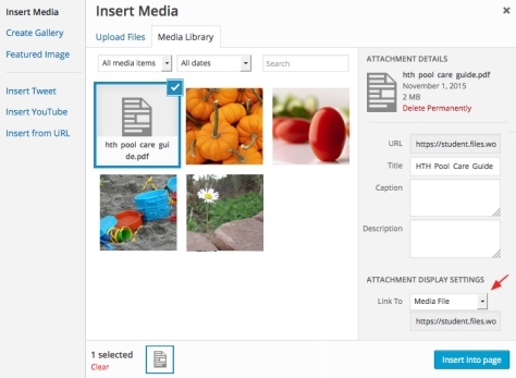 A screenshot demonstrating how to insert media files into a WordPress page or post.