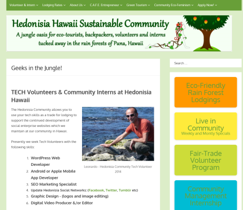 A screen shot of Hedonisia, Tech Volunteer webpage