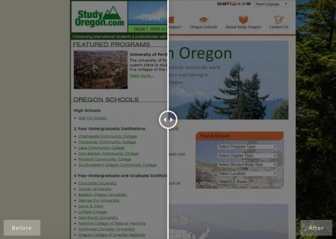 A web design project Mozak Design did.