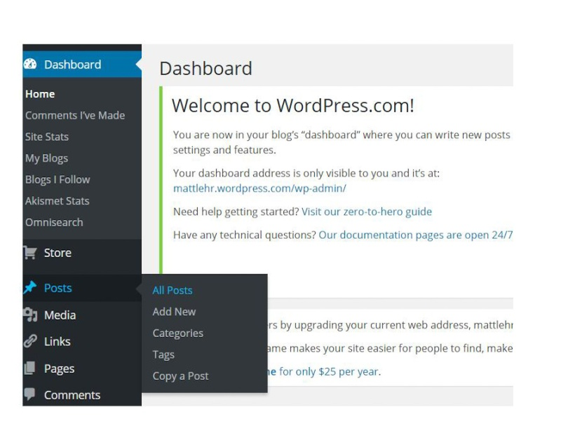 "Screen shot of WordPress backpage highlighting the icon ""Page"" and ""Post"""