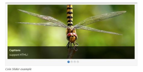 Example of coin slider with a picture of a dragonfly.